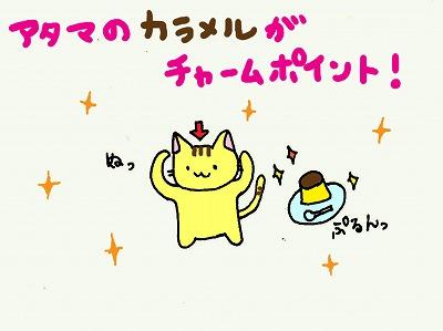 ぬこ自己紹介3