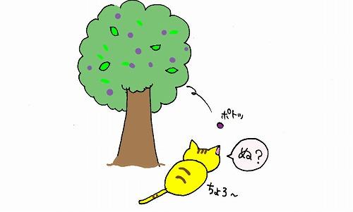 ぬこの食事 (2)