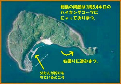 テンちゃんママさん相島2