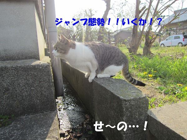 IMG_3359.jpg