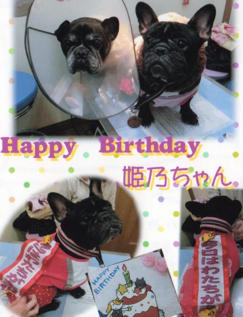 姫乃 誕生日