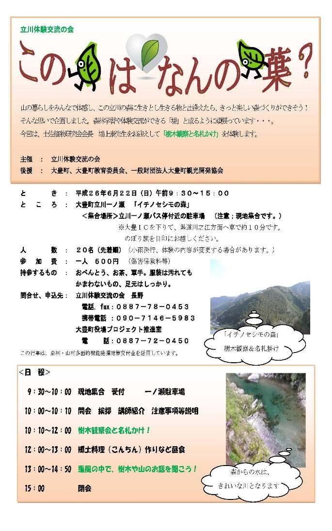 なんの木の葉?チラシ(最終) - コピー (2)
