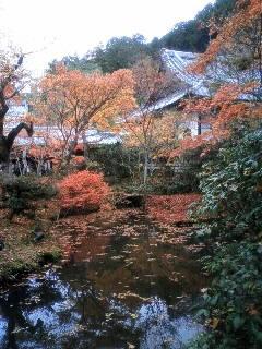 121124-金福寺