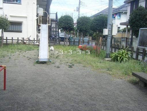 DSCF6551.jpg