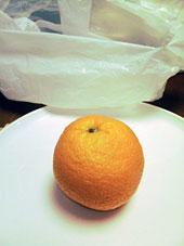 オレンジ図01