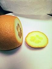 オレンジ図02