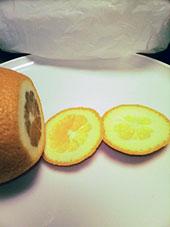 オレンジ図03