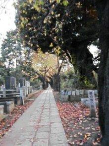 OZAKUのブログ-091123_1608~01.jpg
