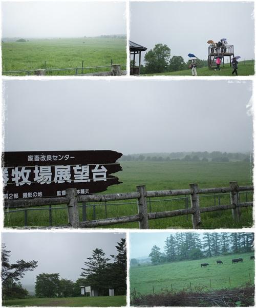 牧場展望台