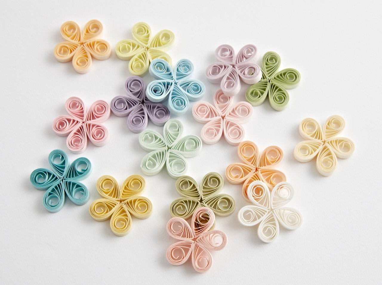16色Lお花