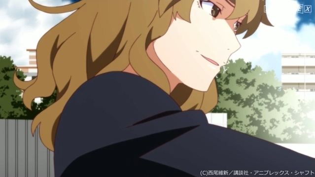 アニメ・漫画関係_化物語_20140324_09