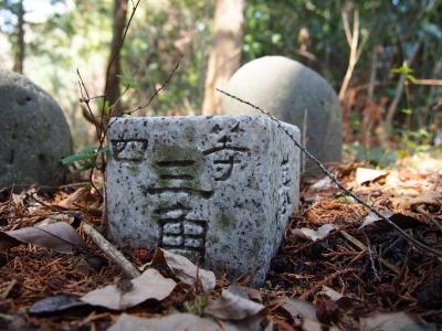 11早川山頂