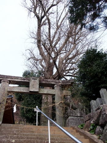 1春日神社