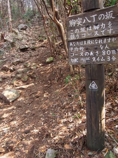 4二ノ岳登山道胸突八丁