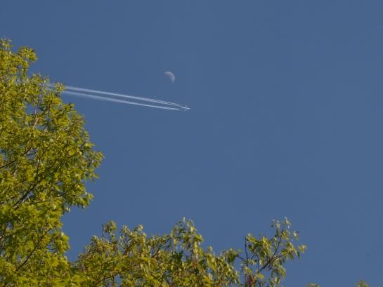 月と飛行機雲
