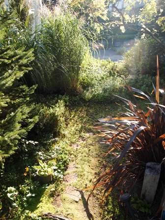 my-garden 113