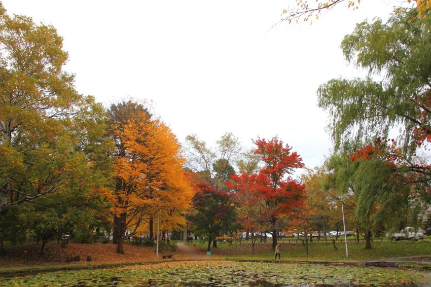 141016-北海道大学18