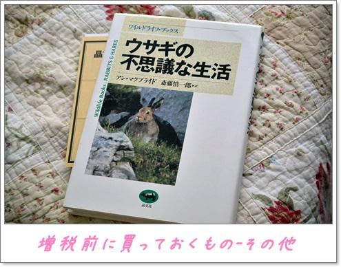 ウサギさんの本1