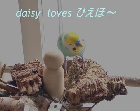 ディジーひえ穂とディジー1-1-1ひえほlove
