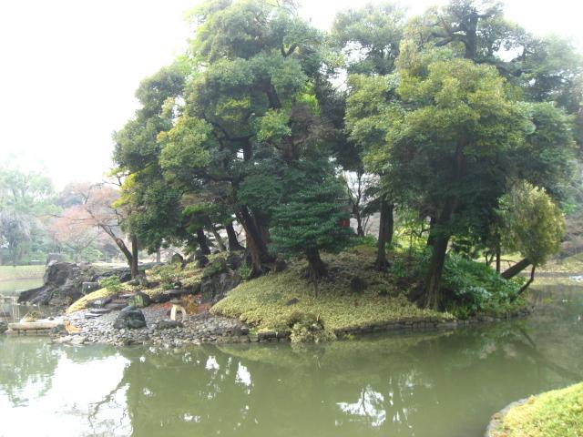 中村写真2 463