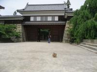 ue.上田城 20100625 002