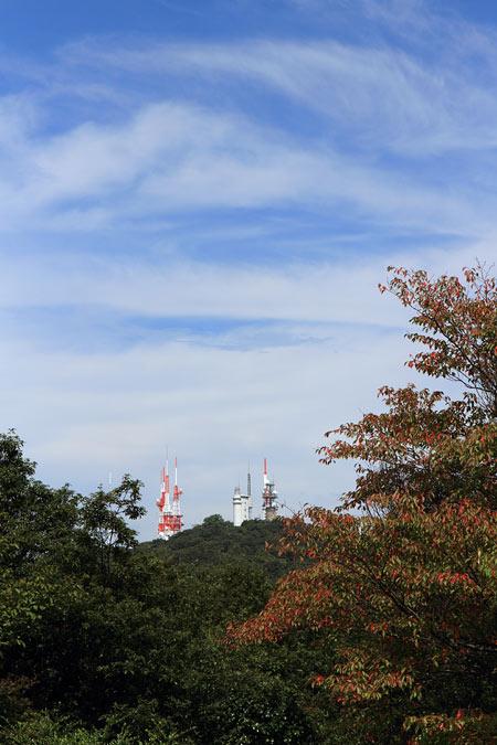 生駒山 小さな秋1