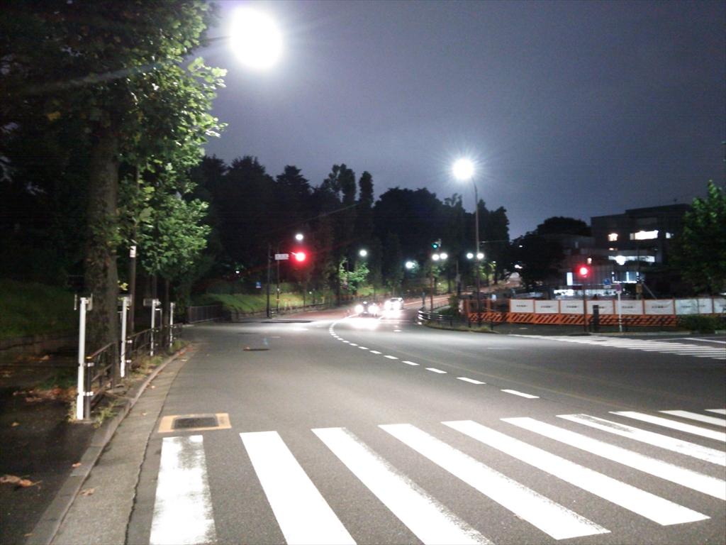 DSC_2721_R.jpg