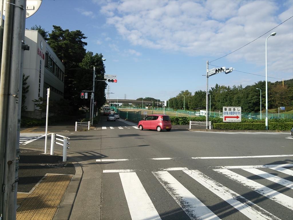 DSC_2768_R.jpg