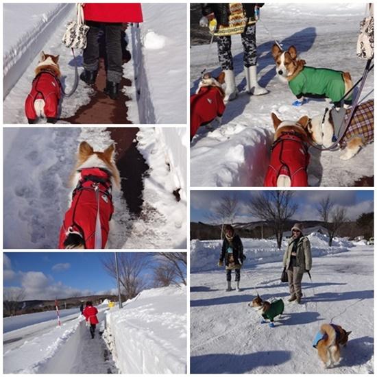 20140222 雪歩き
