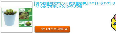monow3_140222.png