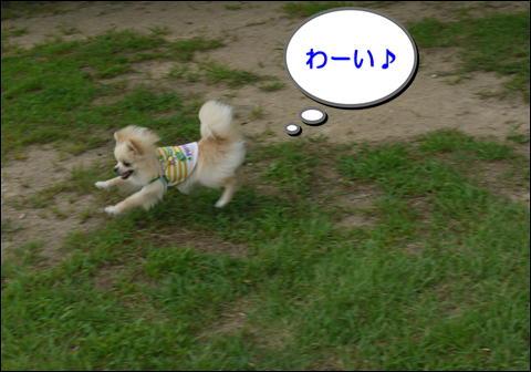 201407274.jpg