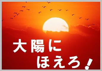 blog大陽にほえろ-op