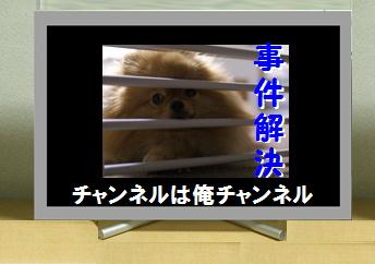 blog大陽にほえろ-11