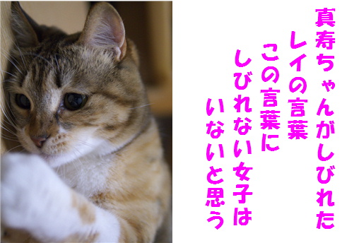 blog北斗-7-2