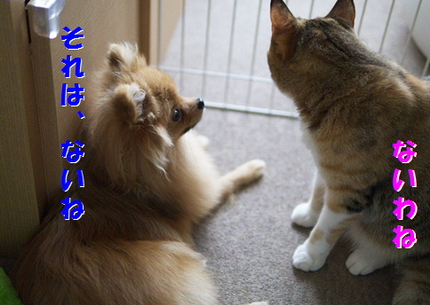blog北斗2-5