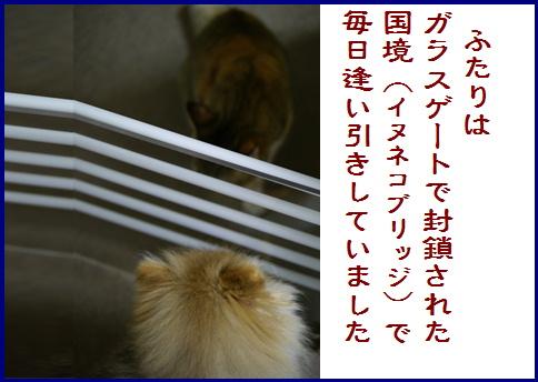 blogある愛の詩-3