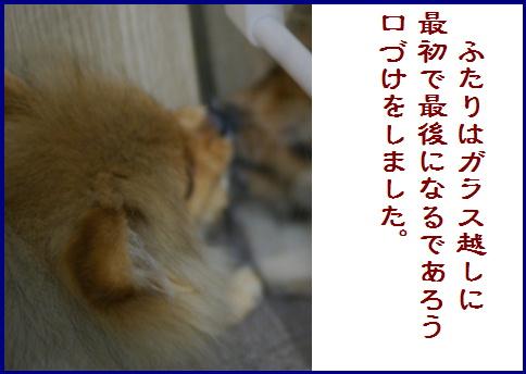 blogある愛の詩-8