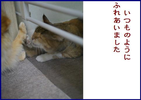 blogある愛の詩-6