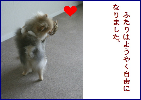 blogある愛の詩-10