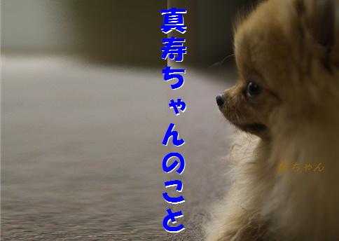 blogズッコケ伝説2
