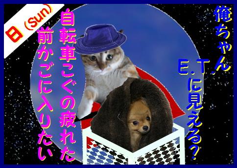 blogマネシネマ8a