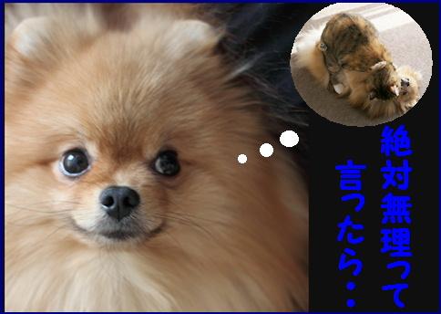 blog女優2