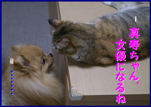 blog女優1b