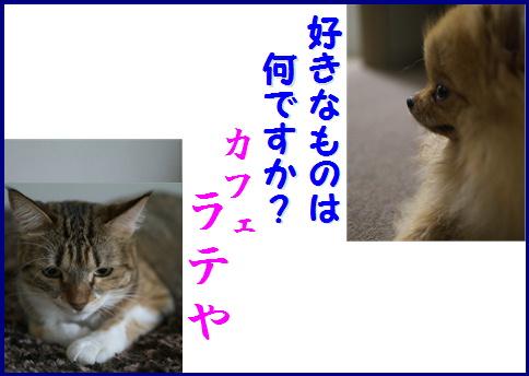 blog女優7b