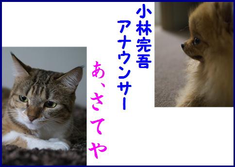 blog女優8c