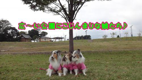 002_convert_20141021172637.jpg