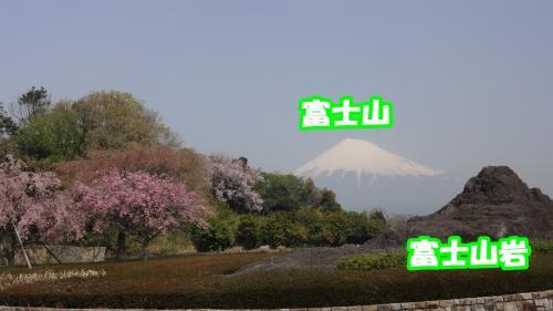 006_convert_20140410171321.jpg