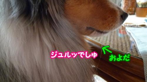 006_convert_20140728133242.jpg