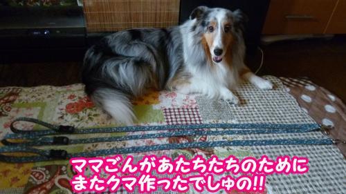 006_convert_20140801160143.jpg