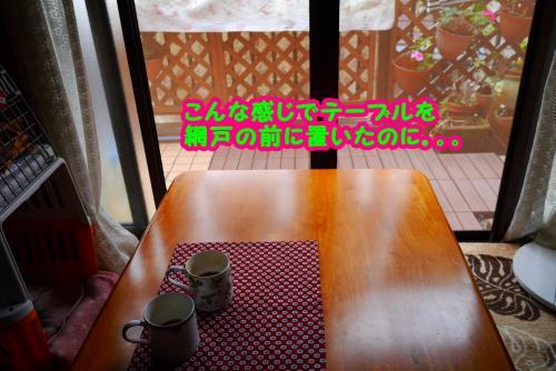 013_convert_20141007155538.jpg